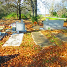 The Shepard family plot. Perhaps a little strange to share. My entire life I have been the only Shepard in the family on my mother's side only to discover that I'm related to three-quarters of the people in Blakely, GA on my father's side. So I took a picture.