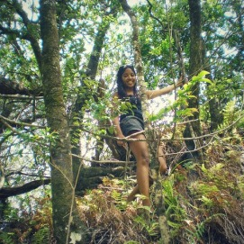 Trailblazing Iao Valley