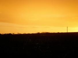 Upcountry Sunrise